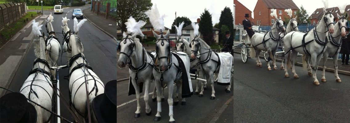 http://www.horseandcarriagecompany.com/wp-content/uploads/2017/01/funerals4-1136x400.jpg