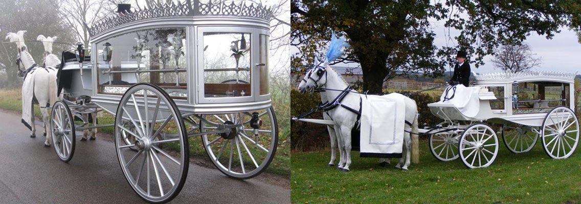 http://www.horseandcarriagecompany.com/wp-content/uploads/2017/01/slidef3-1136x400.jpg