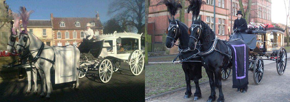 http://www.horseandcarriagecompany.com/wp-content/uploads/2017/01/slidef4-1136x400.jpg