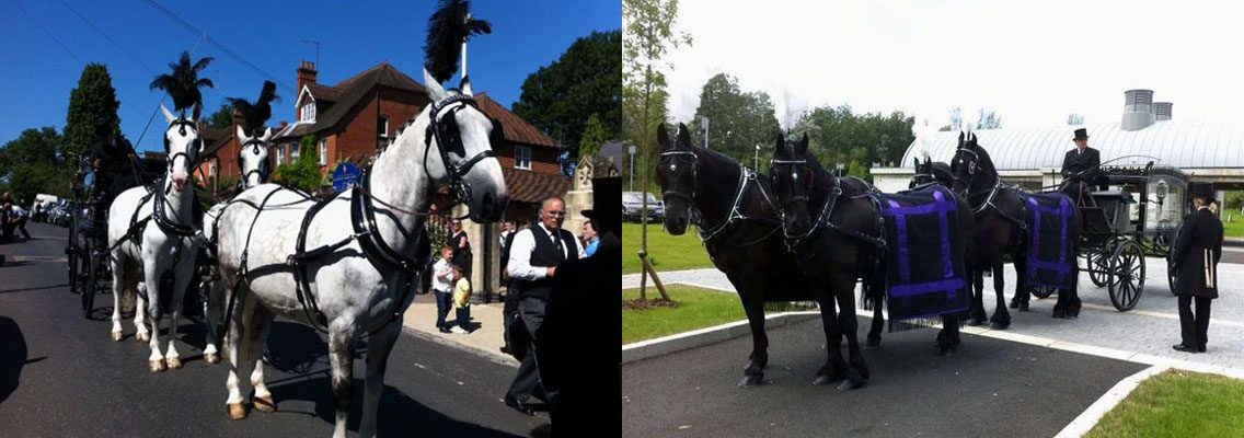 http://www.horseandcarriagecompany.com/wp-content/uploads/2017/01/slidef5-1136x400.jpg